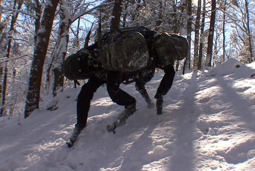 Meet WildCat's Brother: Big Dog, courtesy of BostonDynamics.com