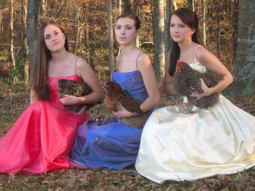 Weird Girls with Animals Prom Picture - SlightlyQualified.com Funny Pics