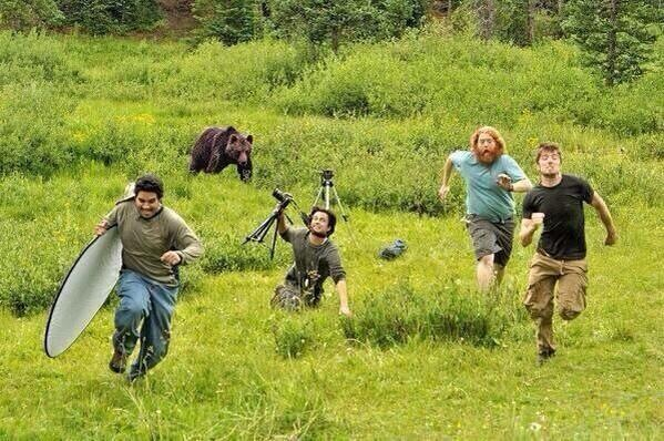 National Geographic Photographers Run From Black Bear Picture - SlightlyQualified.com