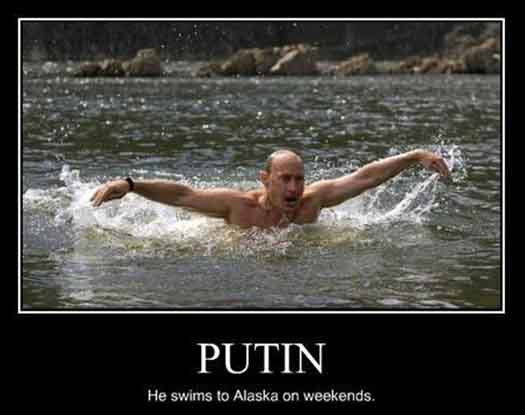 Putin Swims to Alaska on the Weekends Funny Pic