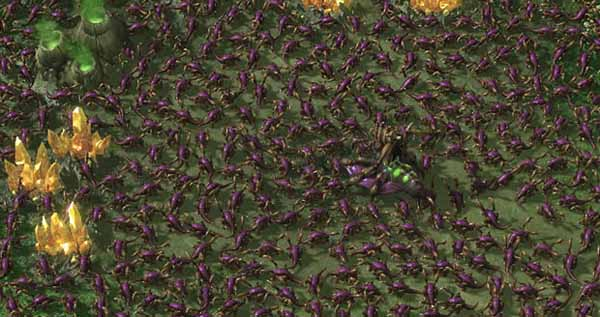 Zerg Rush at SlightlyQualified.com